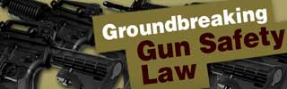 Groundbreaking Gun Safety Legislation