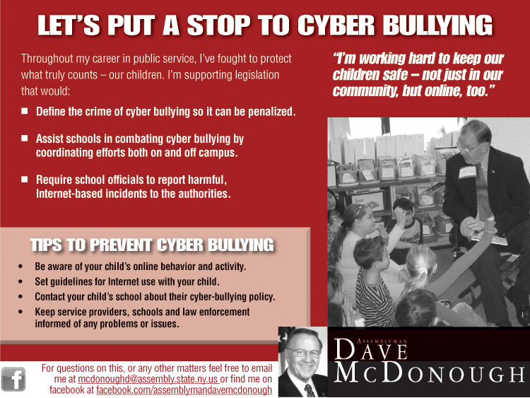 the cyber crime and the cyber bullying