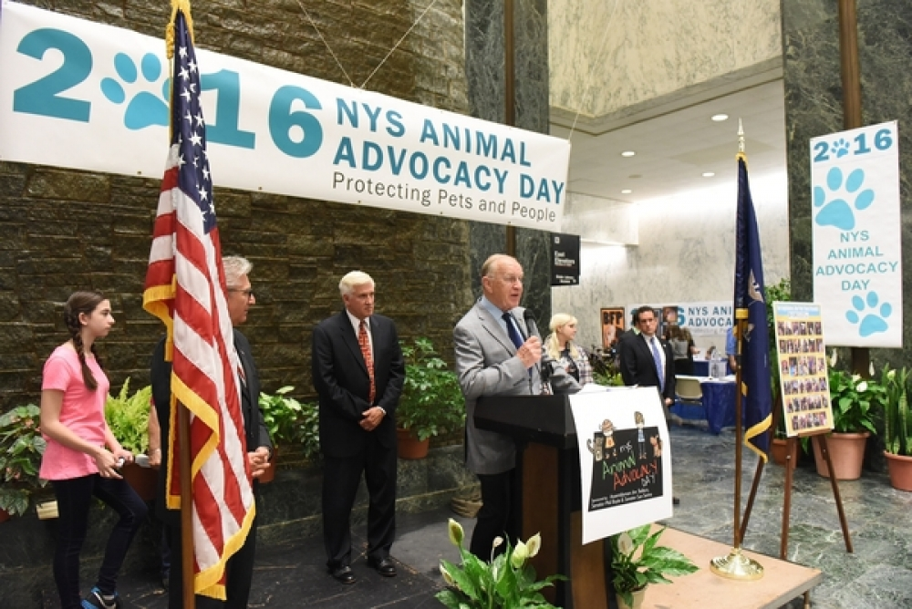 Assemblyman Dave McDonough (R,C,I-Merrick) [at podium] addresses a crowd at Animal Advocacy Day in Albany Tuesday.
