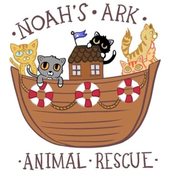 noah's ark animal shelter - 750×842