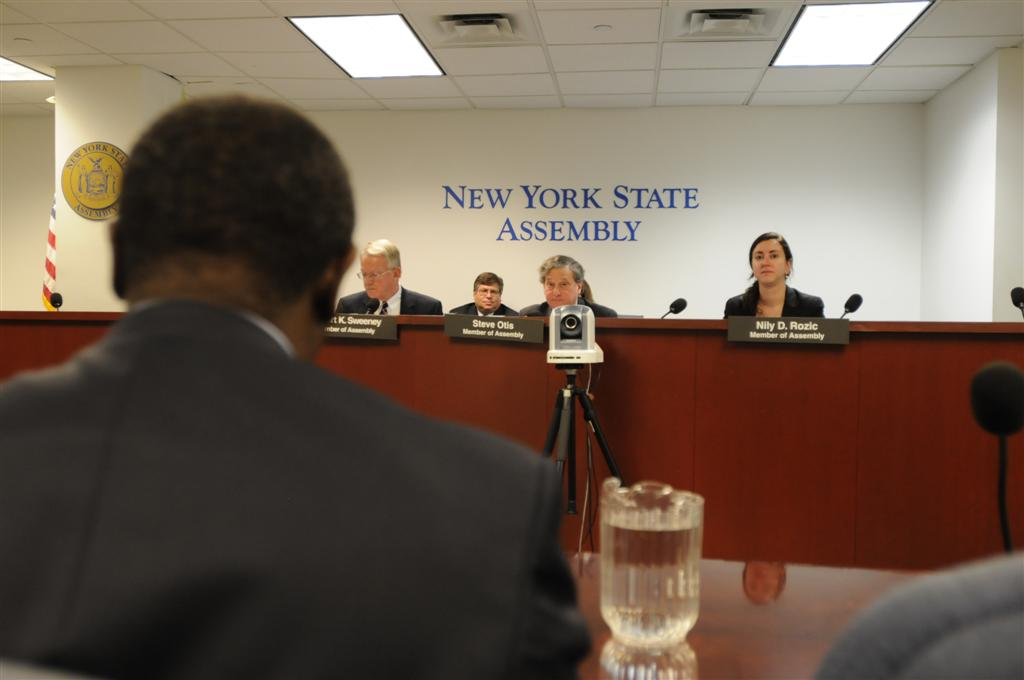 Assemblywoman Nily Rozic participated in a public hearing of the Environmental Conservation Committee.