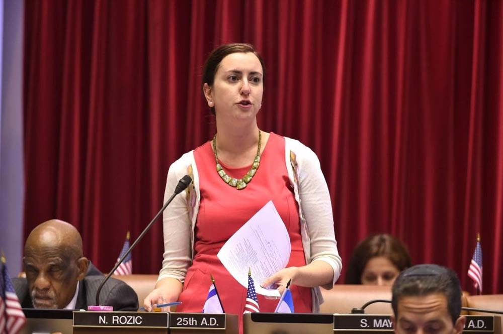 Assemblywoman Nily Rozic, by her fourth year in office, has introduced 89 bills in the Assembly. She has passed 18 bills, with 11 of those having been signed into law.<br />