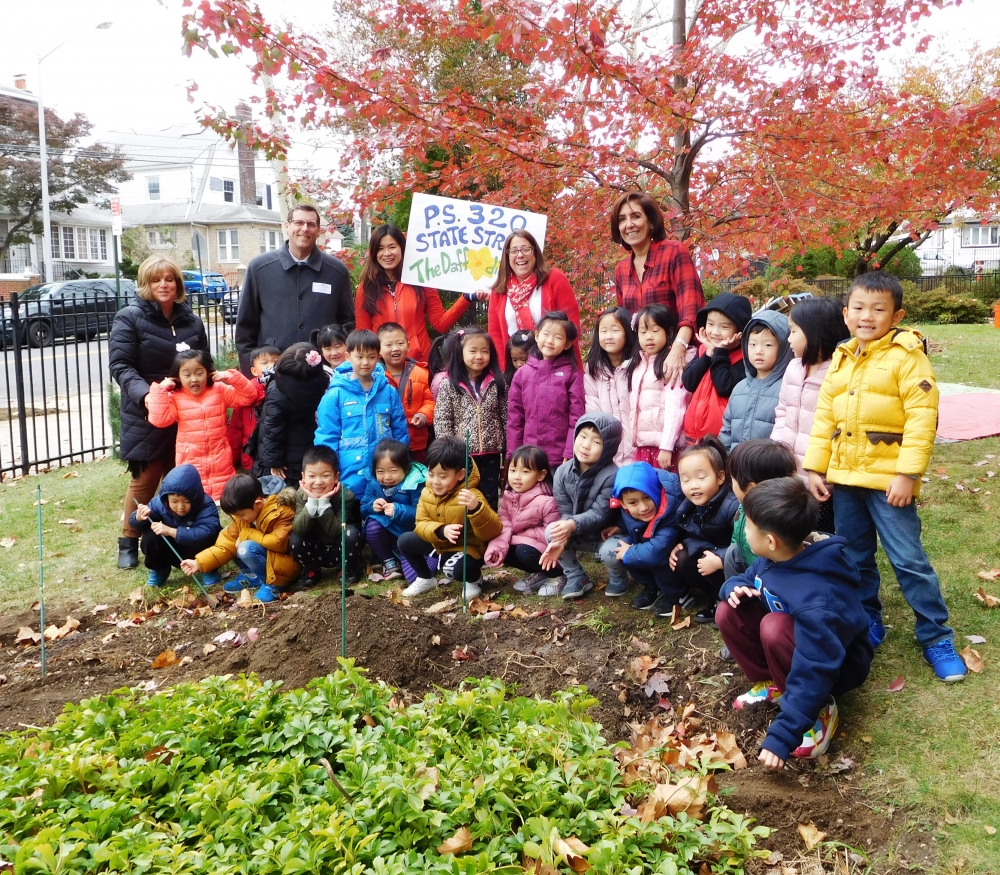 "On November 14, 2017, Assemblyman Braunstein attended the PS 32 ""Activate Our Garden"" event, where the students planted daffodil bulbs as a living memorial for the victims of 9/11."