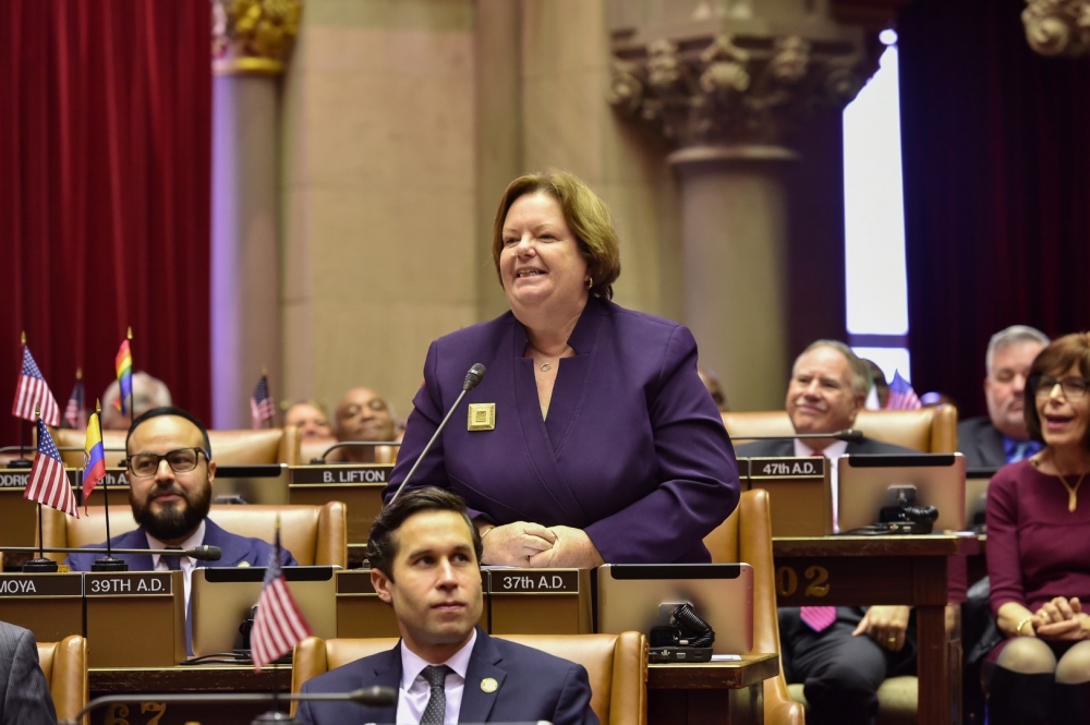 Assemblywoman Catherine Nolan speaking on the opening day of the 2017 Legislative Session