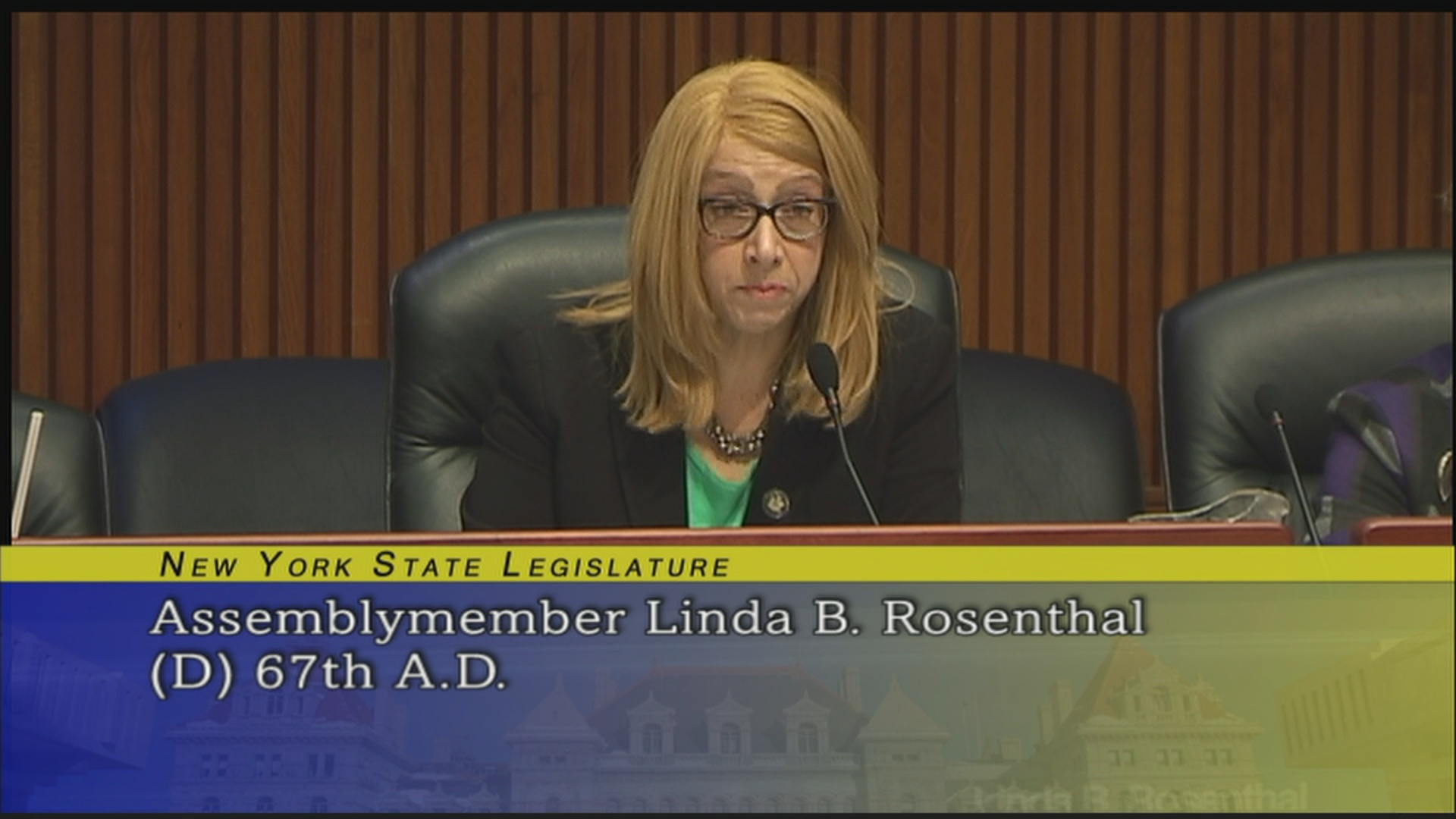 Assemblymember Rosenthal Addresses Issues Relating to Substance Abuse During the Joint Budget Hearing on Mental Hygiene