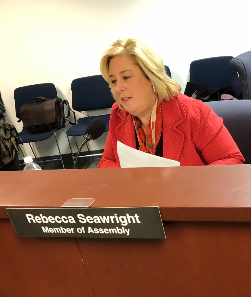 Seawright Participates in Judiciary Committee Hearing on the 2018-19 State Budget<br />