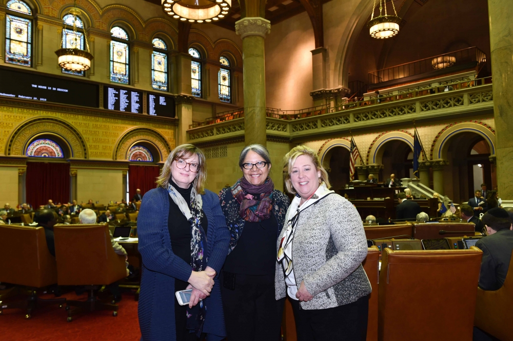 Katherine Defoyd, Mount Sinai Adolescent Health Center Dr. Angela Diaz and Assembly Member Seawright in the Chamber.<br />