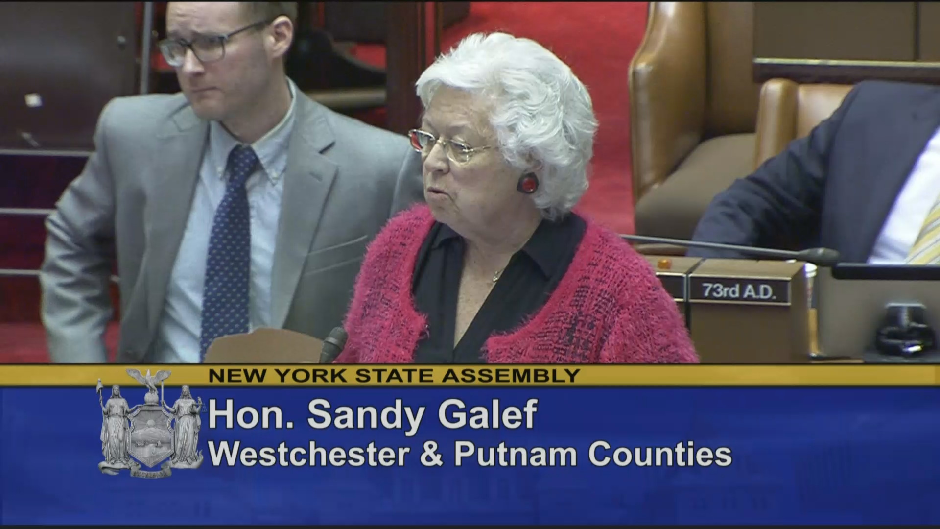 Assemblywoman Galef Introduces Legislation on Copyright Claims