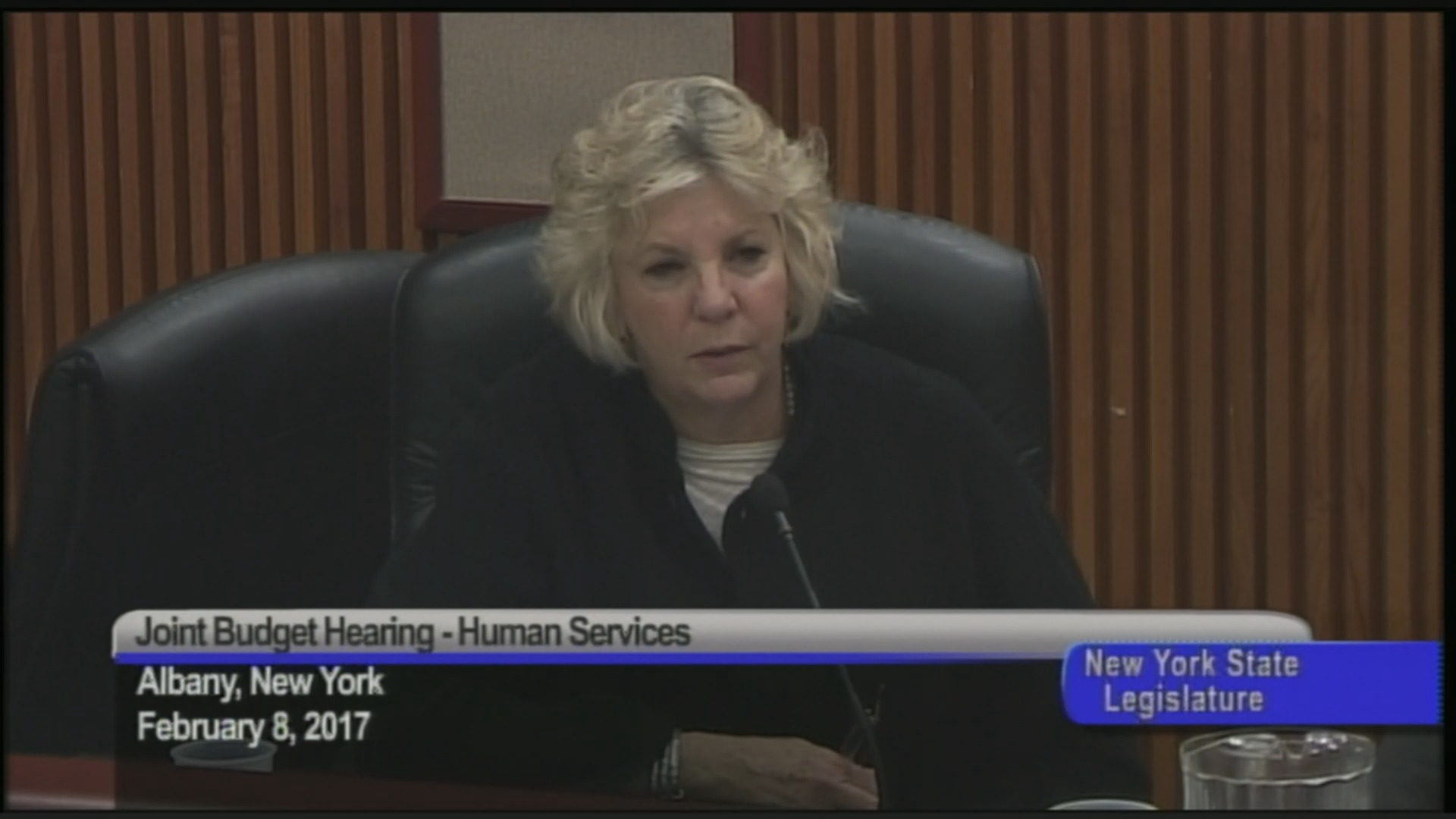 Assembly-Senate Budget Hearing on Funding for Human Services