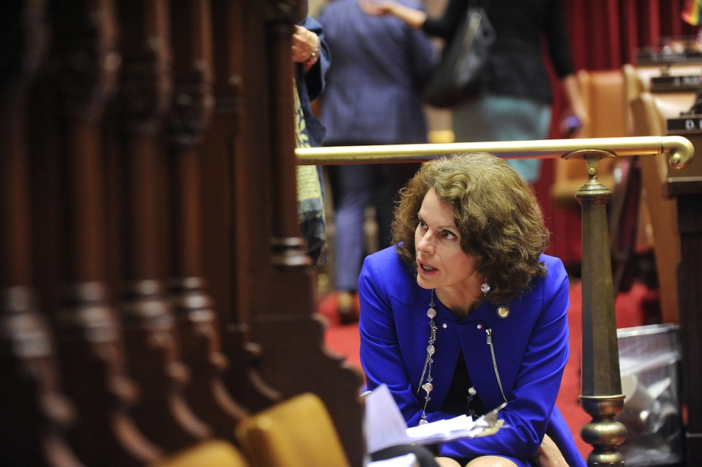 Assemblywoman Fahy in the New York State Assembly Chamber. June 2015.