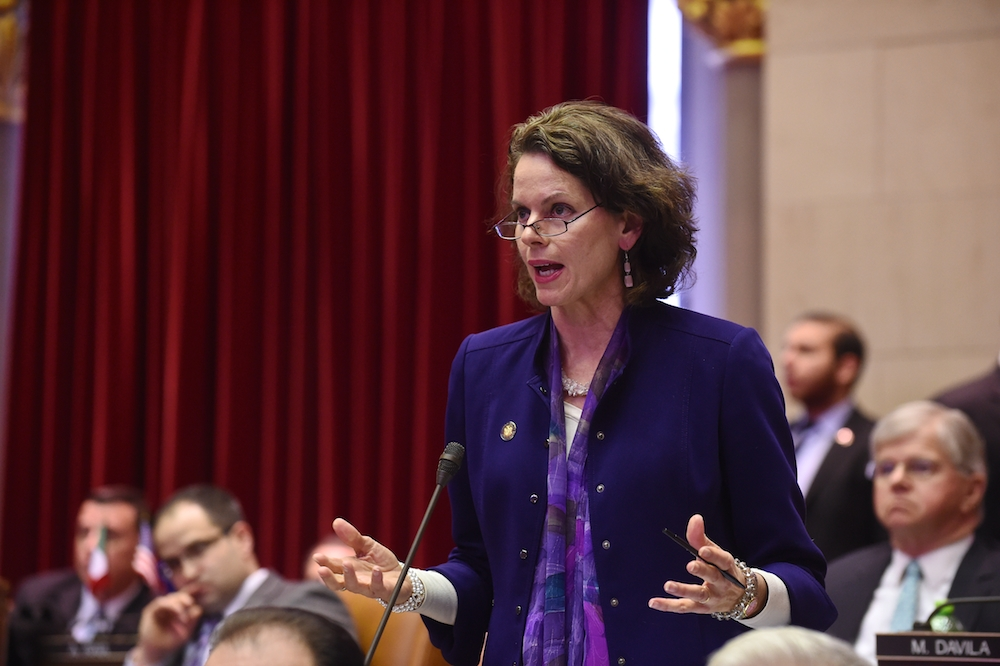 "March 25, 2015, Assemblywoman Fahy expresses her support on the Women's Reproductive Health Act, she says ""I do believe this bill is one that does reaffirm federal law, it does not expand on federal law, it reaffirms it."""