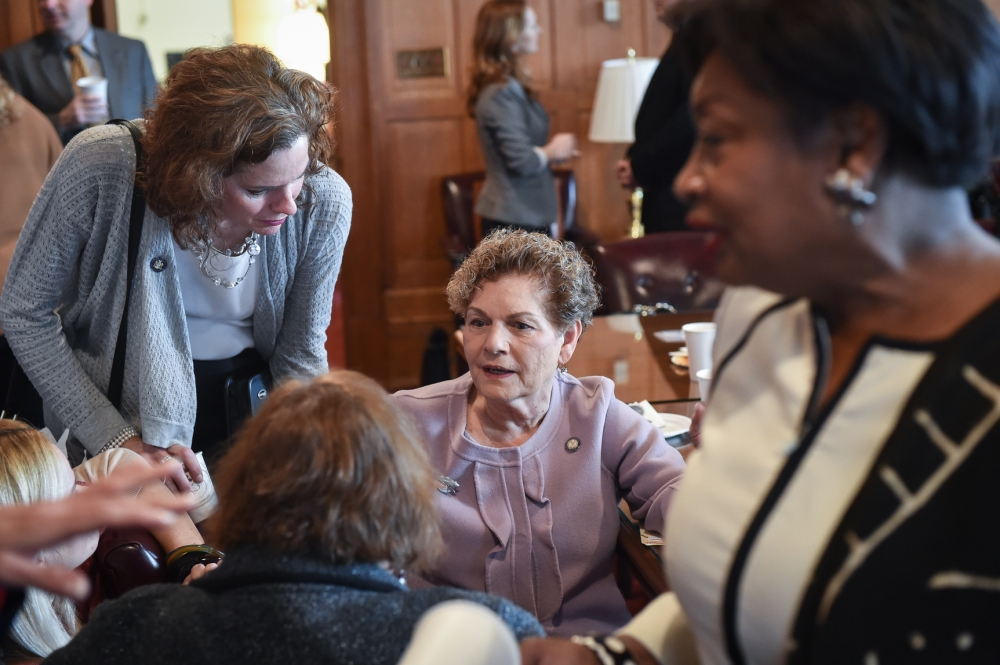 Assemblymember Fahy was eager to work with her colleagues Assemblymember Ellen Jaffee and Senator Andrea Stewart-Cousins on the Bipartisan Pro-Choice Legislator's Caucus in March 2016.