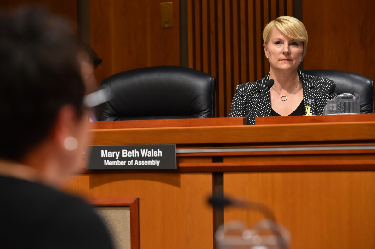 Assemblywoman Mary Beth Walsh (R,C,I,Ref-Ballston) listens in at the joint conference committee today