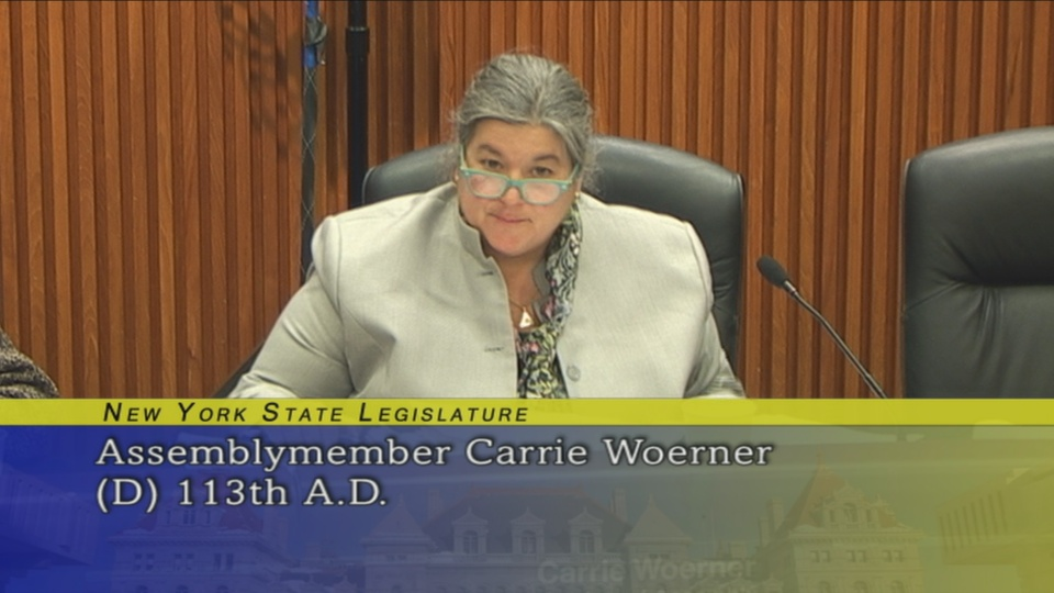 Assemblywoman Woerner Discusses Staffing Levels and Enforcement at The Environmental Conservation Budget Hearing