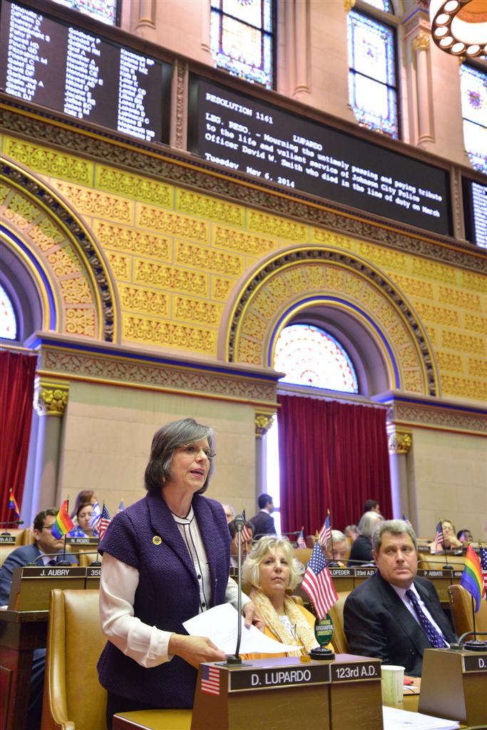 May 6, 2014: Assemblywoman Lupardo introduces a resolution honoring the life and service of Johnson City Police Officer David W. Smith who was killed in the line of duty on March 31, 2014.