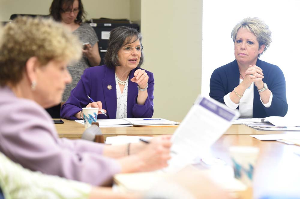 May 10, 2016 – Assemblywoman Lupardo, Chair of the Committee on Children and Families, leads a meeting of the committee.
