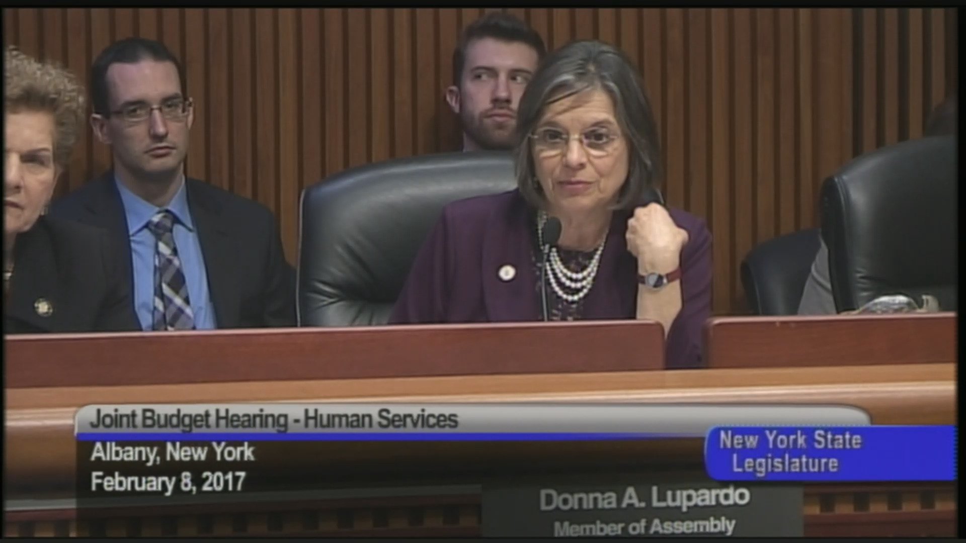 Assembly-Senate Budget Hearing On Human Services