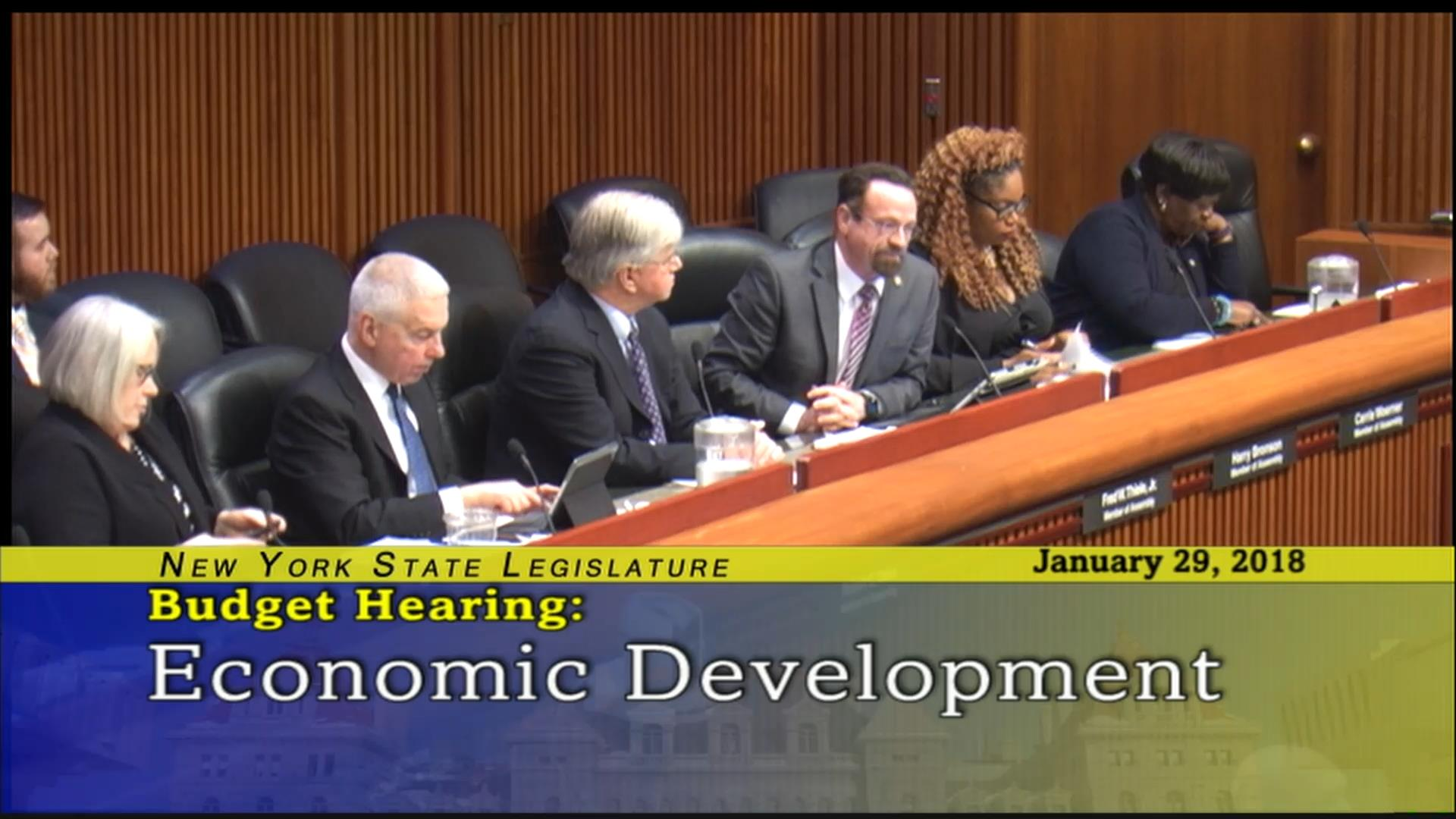 Budget Hearing on Economic Development