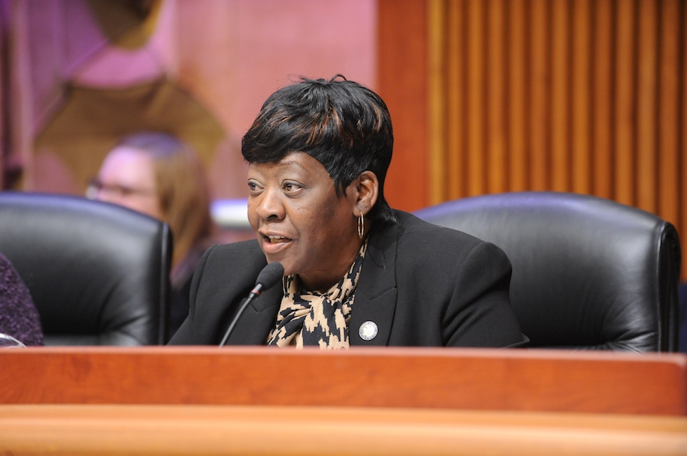 February 26, 2015 � Assemblywoman Peoples-Stokes who currently Chairs the Assembly Committee on Governmental Operations, during the Public Protection Budget Hearing in Albany.
