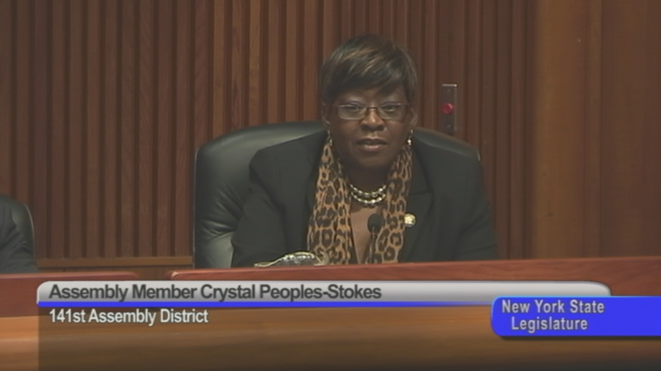 Assemblymember Peoples-Stokes Questions The NYS Office of Temporary and Disability Services Panel On Their Role In Fostering Minority and Women Owned Businesses