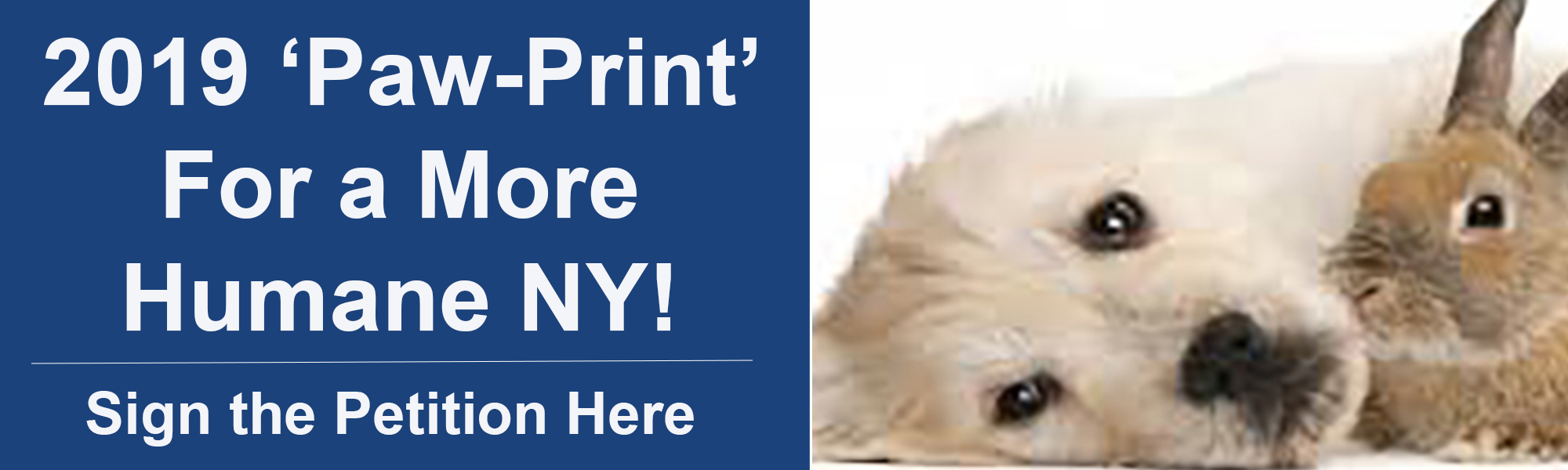 2019 'Paw-print' for a More Humane New York!